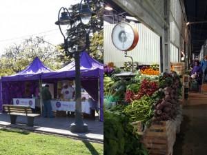 Feria del Ahorro y Mercado de Concentración